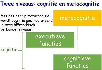 Metacognitie schema